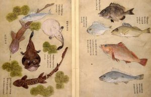 On the Formation of Knowledge in 18th Century China @ Centre for Linguistics | Leiden | Zuid-Holland | Nederland